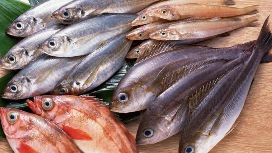fresh_fish