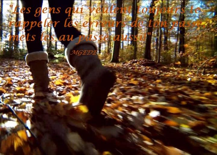 186938284-botte-chaussure-feuilles-mortes-automne-vegetation